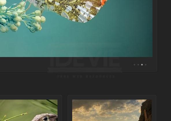 Work - Portfolio WordPress Theme