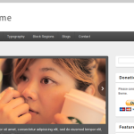 30 Powerful and Free Drupal CMS Themes