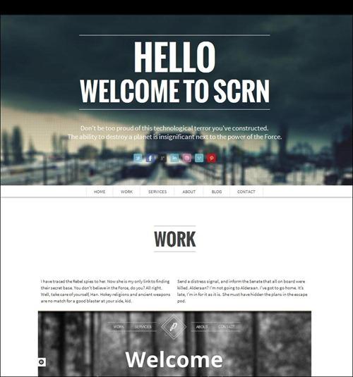 scrn-wordpress-photography-theme[5]