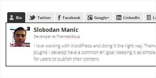 WordPress Plugin - Fanciest Author Box