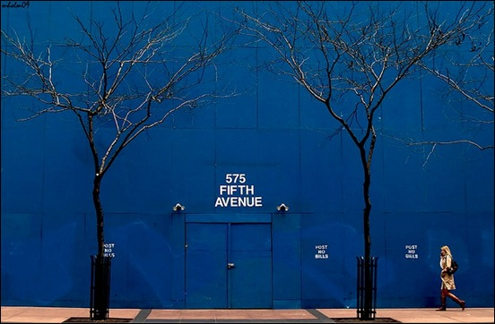 fifth-avenue-