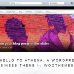 How To Get The Most Out Of A Premium WordPress Theme
