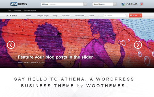 WooThemes offers demos of all their themes, including an option to try out different preset color schemes.