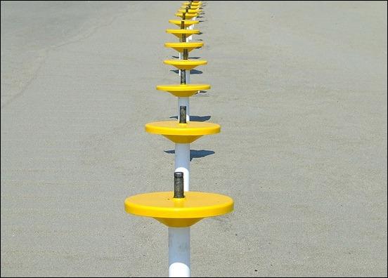 yellow-standings-