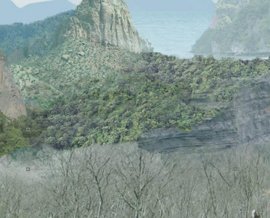 jungle-05 rereduplicated render