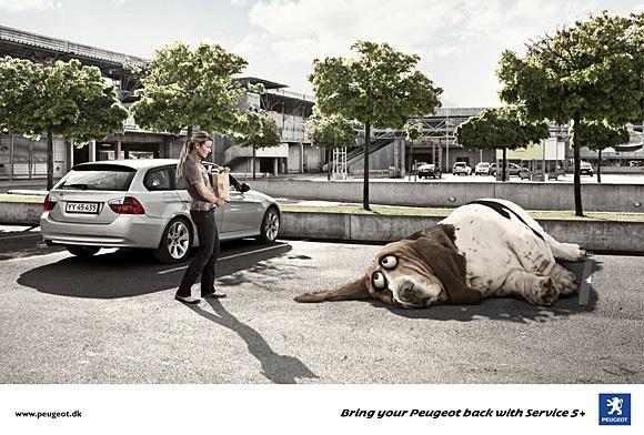 11. dog advertising
