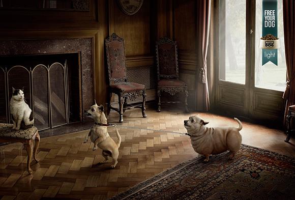 2. dog advertising