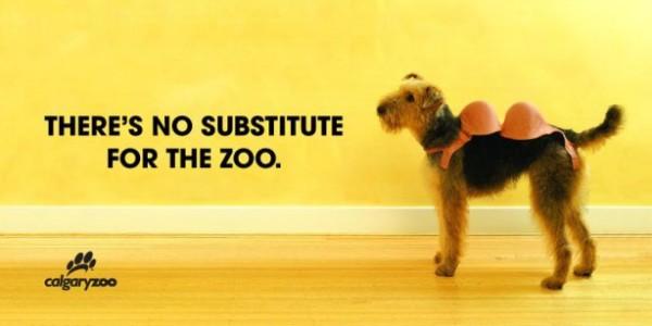 21. dog advertising