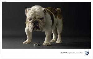 22. dog advertising