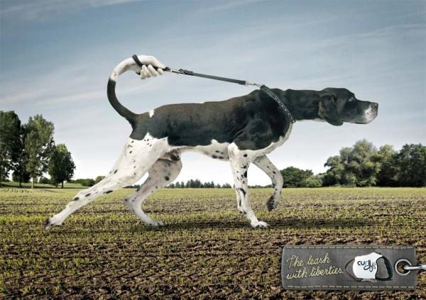 23. dog advertising