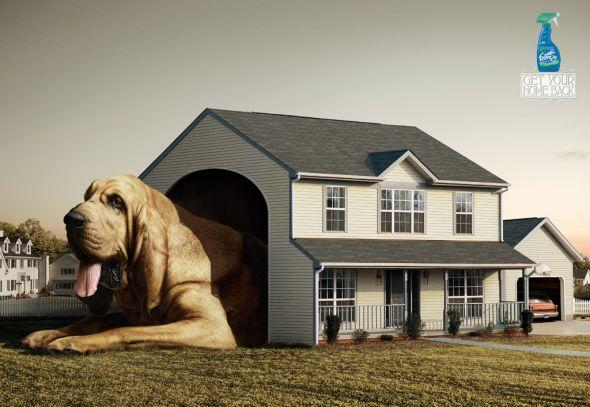30. dog advertising