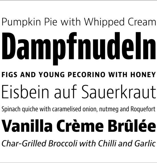 Bernini Sans Premium Font