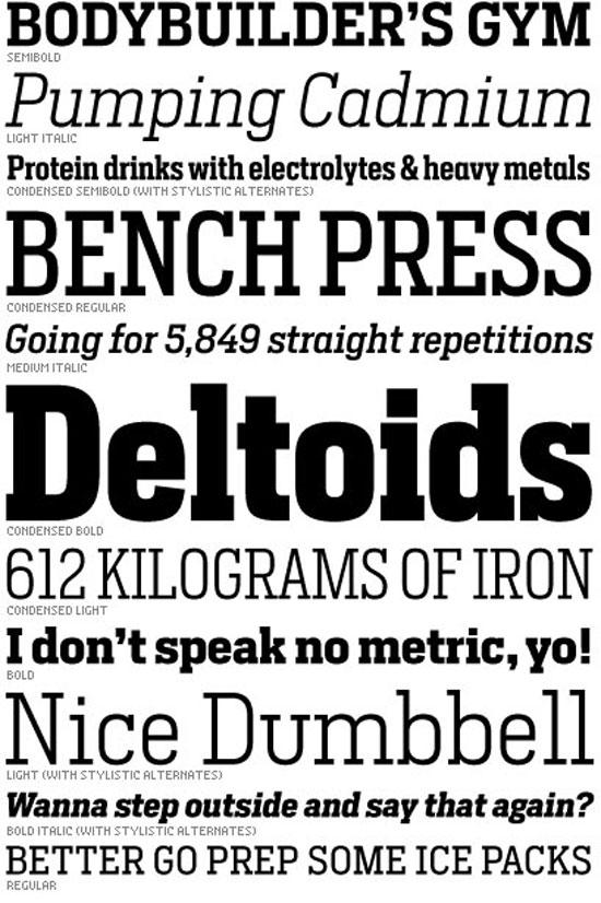 heron serif Premium Font
