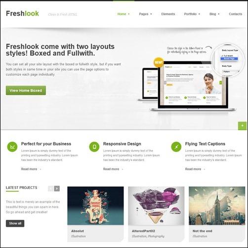 Freshlook  business website template