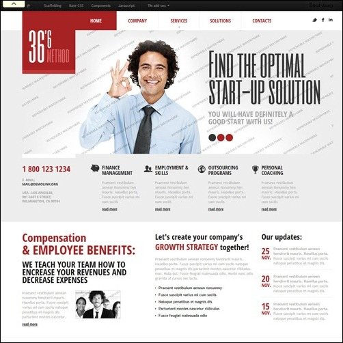 40 high quality business website templates idevie white management business website template accmission Images