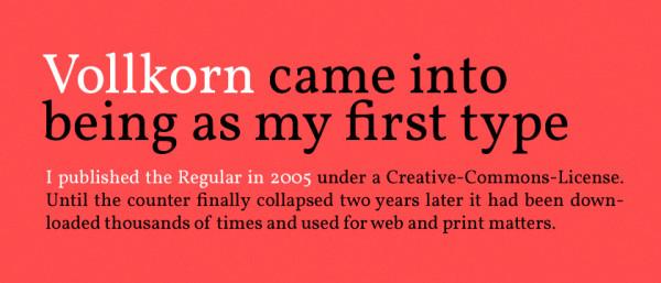 2. google web font