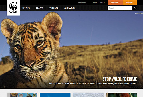 instantShift - The World Wildlife Fund