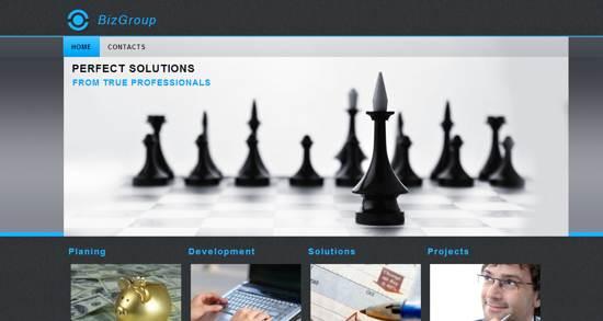 bizgroup web template