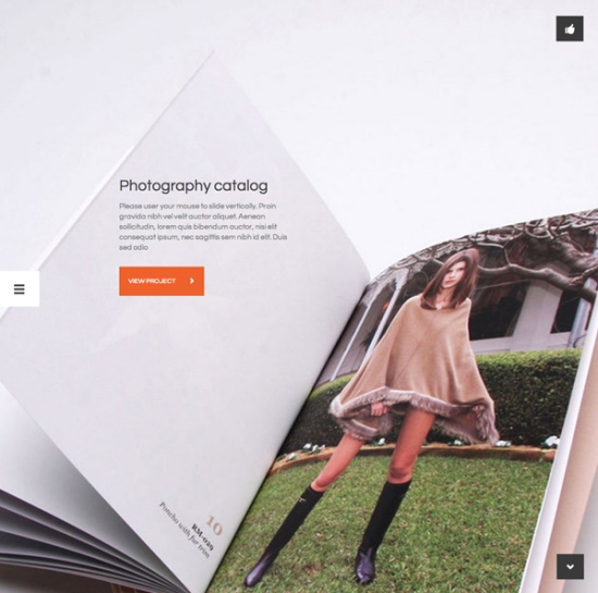 Flat-WordPress-Themes-1