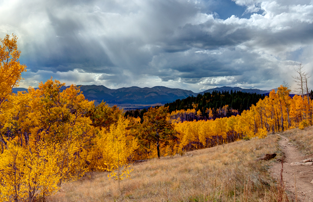 aspen colorado trail photo desktop wallpaper