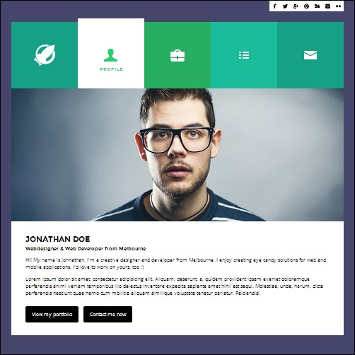 programmer cv template more info - Interactive Resume
