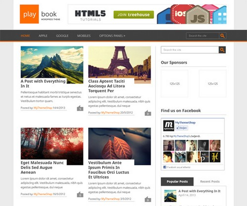 Playbook free WordPress blog themes