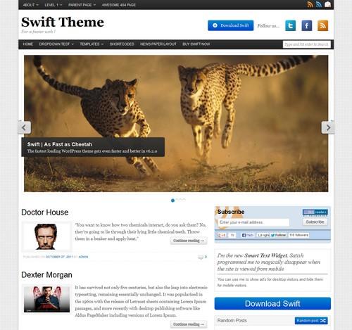 Swift Basic WP Free Theme