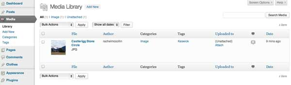 attachments-and-taxonomies-media-library-screen-with-tags