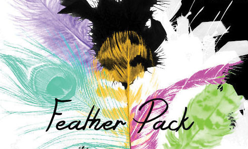 Feather Pack Brushes