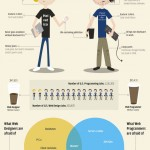 15 Cool Infographics For Web Designers and Developers 2013