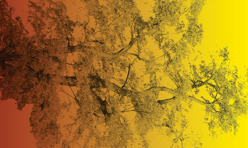Tree of Life Brushes