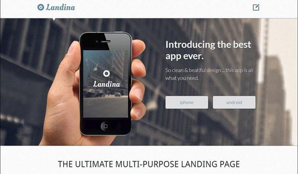 landina-responsive-landing-page