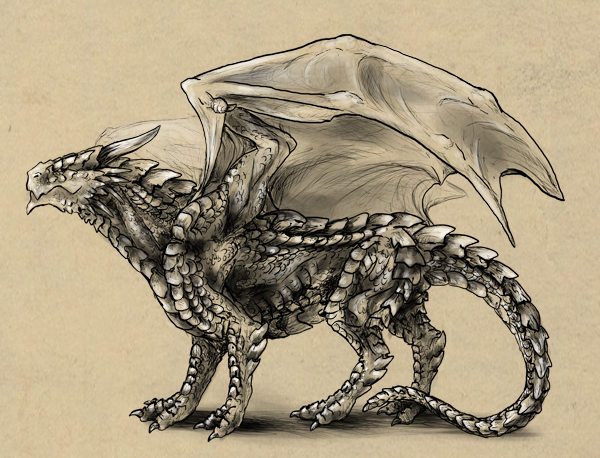 Rawr How To Draw An Anatomically Correct Dragon IDevie