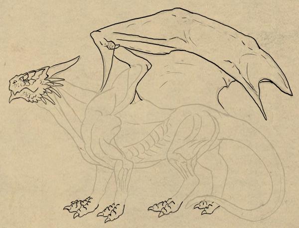 dragonbody_5-5_scales