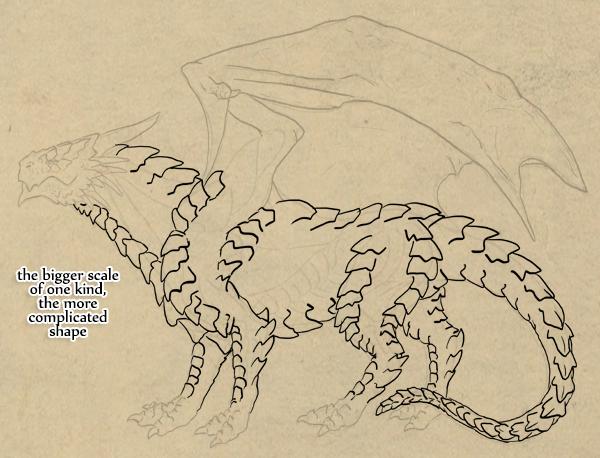 dragonbody_5-6_scales