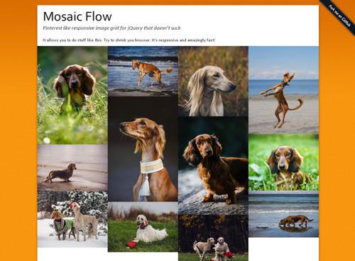 Mosaic Flow