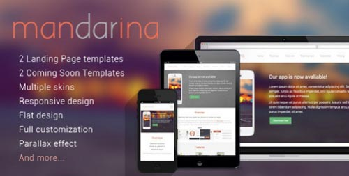 responsive_landinge_page_template_20