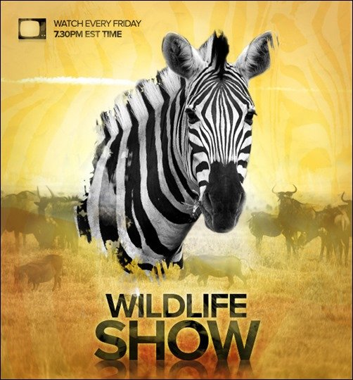 Design a Professional Wildlife TV Show Poster