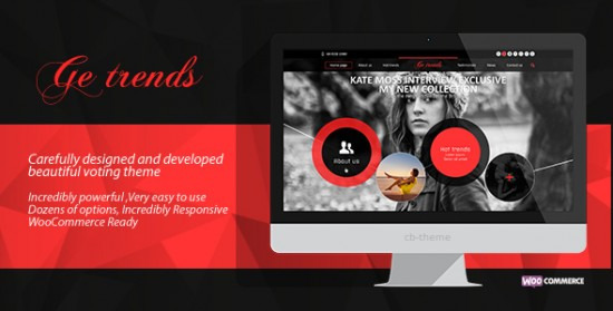 portfolio-wordpress-themes-003