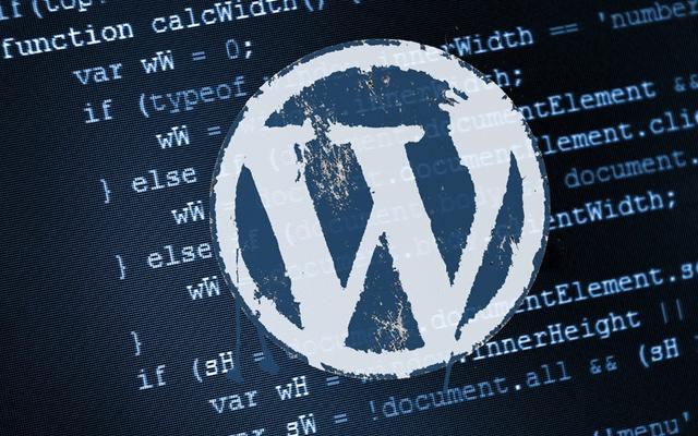 wordpress themes code a settings page gui