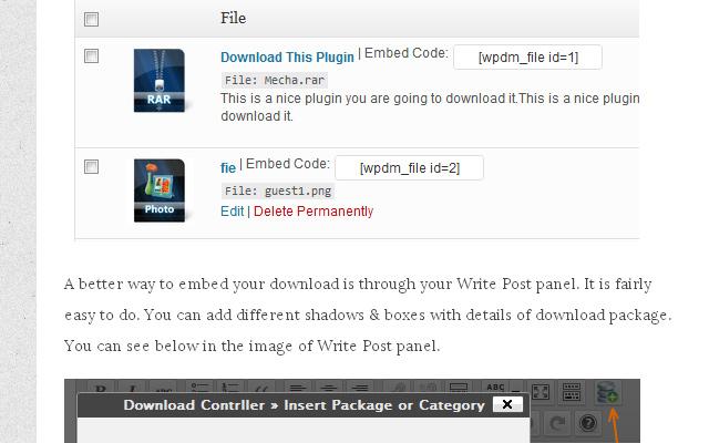 tracking file downloads using wordpress