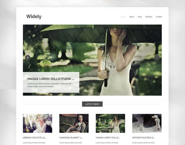 Widely Minimalist WordPress Theme