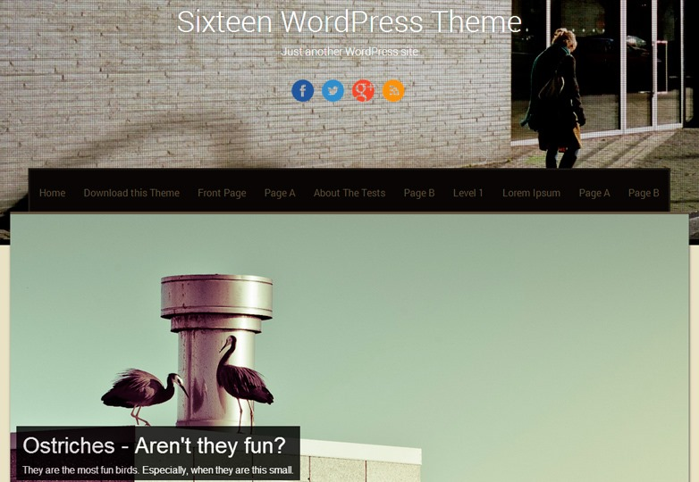Sixteen theme