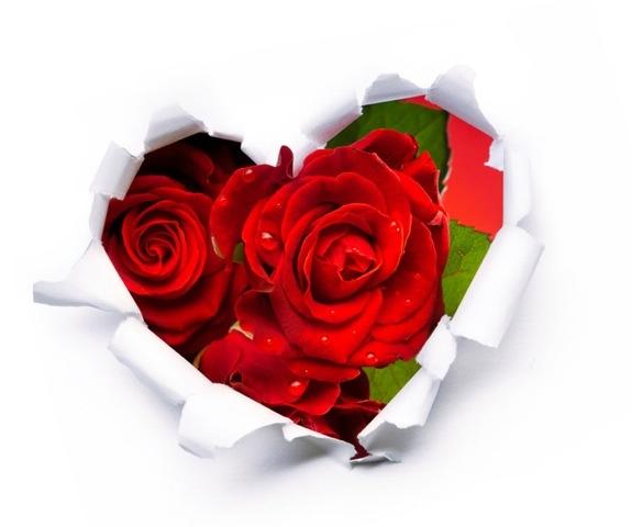 Stock Agencies That We Love Around Valentine's Day
