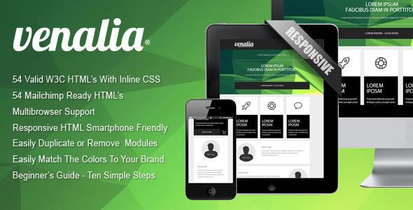 'Venalia' Effective Newsletter Template