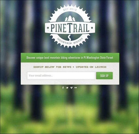 pine-trail-MTB