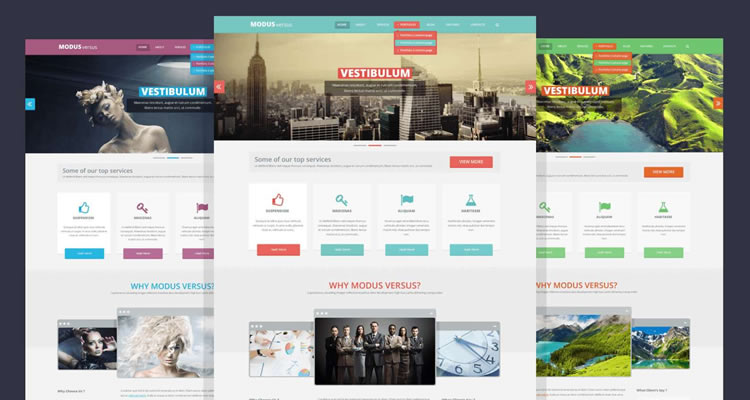 Modus Versus modern clean web template psd free