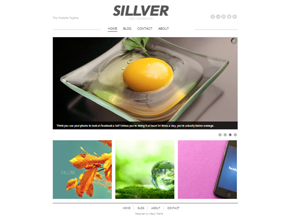 Sillver free website photoshop template