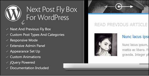 Next Post Fly Box free pagination plugins