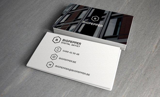 bigpepper branding print design logo work